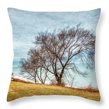 Lakeshore Lonely Tree Throw Pillow