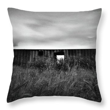 Land Of Decay Throw Pillow