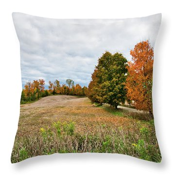 Landscape In The Fall Throw Pillow