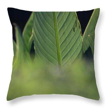 Large Dark Green Leaves Throw Pillow