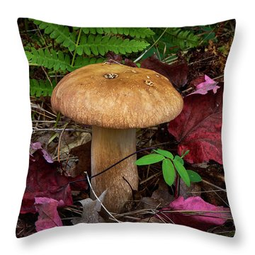 Large Mushroom Throw Pillow