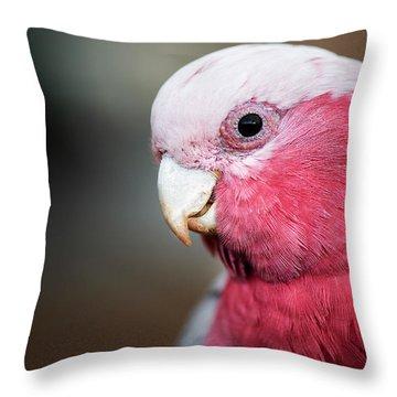 Large Pink And Grey Galah. Throw Pillow