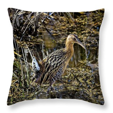 Largest North American Rail Throw Pillow