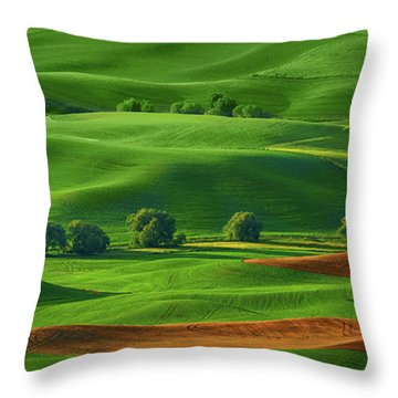 Throw Pillow featuring the photograph Last Field To Plant by Mary Jo Allen