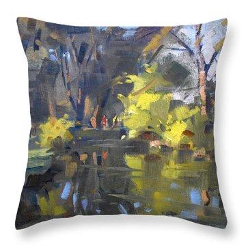 Last Suntouches In Ellicott Creek Park  Throw Pillow