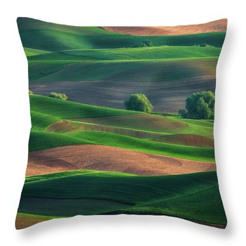 Late Afternoon In The Palouse Throw Pillow