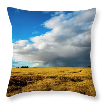 Late Summer Storm With Tornado Throw Pillow