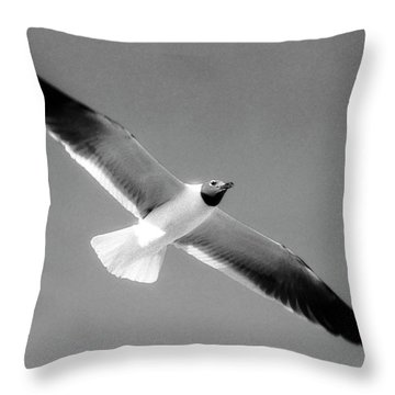 Laughing Seagull Throw Pillow
