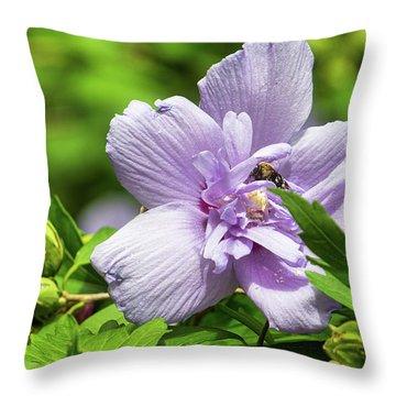 Lavendar Hibiscus Throw Pillow