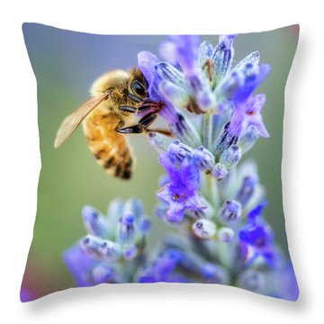 Throw Pillow featuring the photograph Lavender Bee by Nicole Young