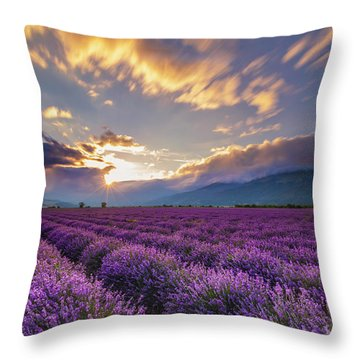 Lavender Sun Throw Pillow