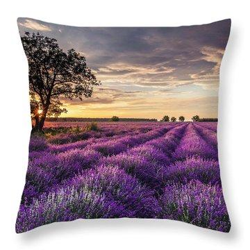 Lavender Sunrise Throw Pillow