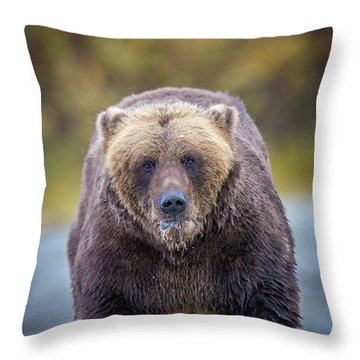 Lazy C Angry  Throw Pillow