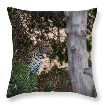 Throw Pillow featuring the photograph LC1 by Joshua Able's Wildlife