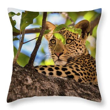 Lc11 Throw Pillow