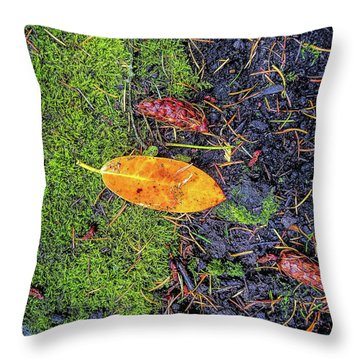 Throw Pillow featuring the photograph Leaf And Mossy by Jon Burch Photography