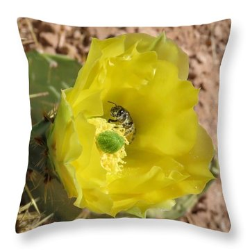 Leaf-cutter Bee Bathing In Gold Throw Pillow