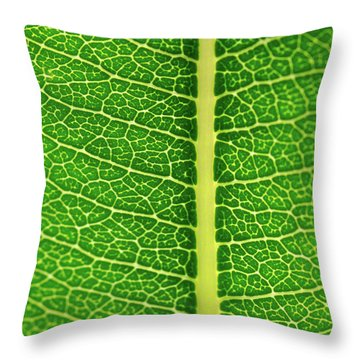 Throw Pillow featuring the photograph Leaf Veins by Jeff Phillippi