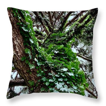 Throw Pillow featuring the photograph Leafy Tree Trunk by Lukas Miller