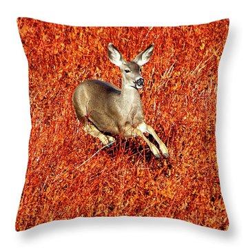 Leaping Deer Throw Pillow