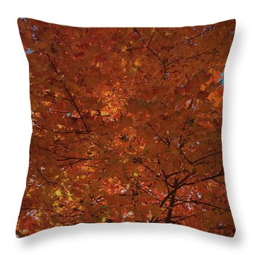 Leaves Of Fire Throw Pillow