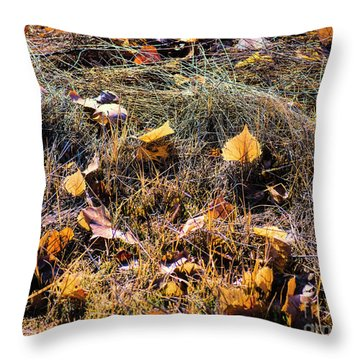 Throw Pillow featuring the photograph Leaves Of Grass by Jon Burch Photography