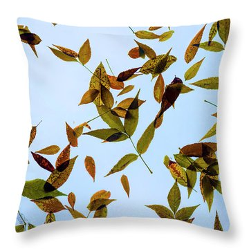 Throw Pillow featuring the photograph Leaves On Glass by Jon Burch Photography