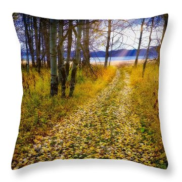 Leaves On Trail Throw Pillow
