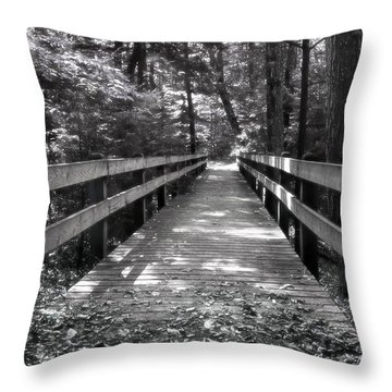 Throw Pillow featuring the photograph Leelanau Trail by SimplyCMB