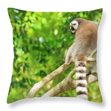 Lemur By Itself In A Tree During The Day. Throw Pillow
