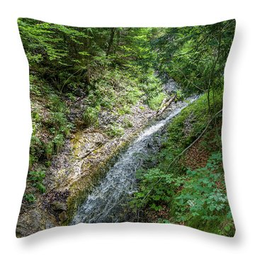 Let The River Run Throw Pillow