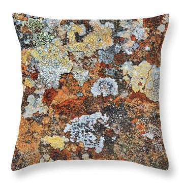 Lichen On Rock Throw Pillow