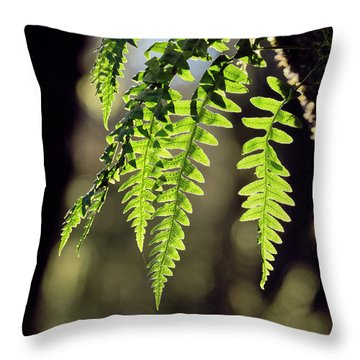 Throw Pillow featuring the photograph Licorice Fern by Whitney Goodey