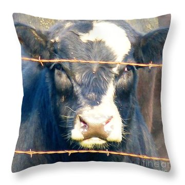 Throw Pillow featuring the photograph Life As I Know It by Rosanne Licciardi