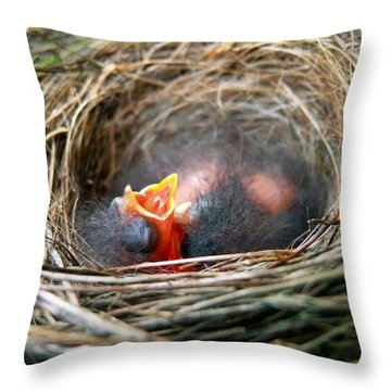 Life In The Nest Throw Pillow