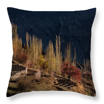 Throw Pillow featuring the photograph Light Slide by Awais Yaqub