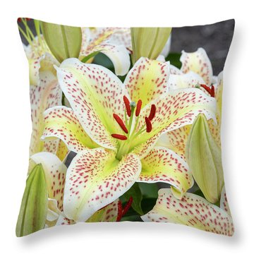 Throw Pillow featuring the photograph Lilium Tigermoon by Tim Gainey