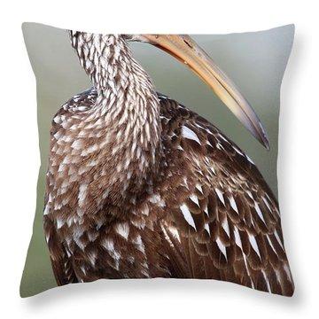 Limpkin Throw Pillow