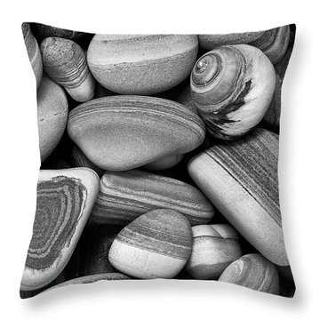 Lined Rocks And Shell Throw Pillow
