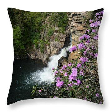 Linville Falls Carolina Rhododendron Throw Pillow