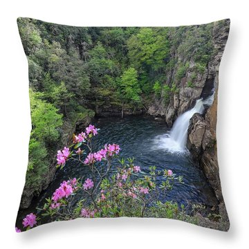Linville Flower Falls Throw Pillow