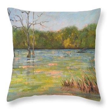 Lion's Den Marsh 3 Throw Pillow