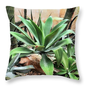 Lion's Tail Agave Throw Pillow
