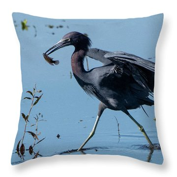 Little Blue Heron With Fish Throw Pillow