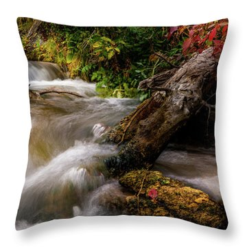 Throw Pillow featuring the photograph Little Deer Creek Autumn by TL Mair