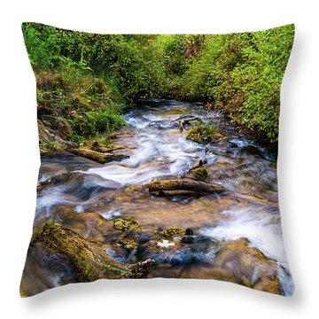 Throw Pillow featuring the photograph Little Deer Creek by TL Mair