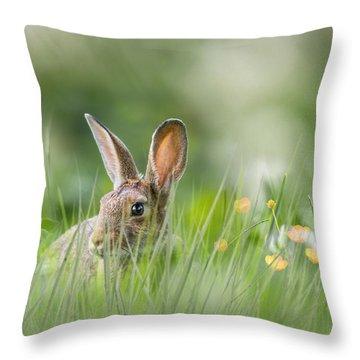 Little Hare Throw Pillow