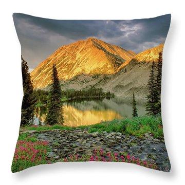 Little Lake Throw Pillow