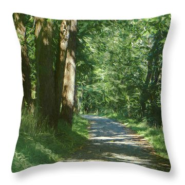 Little Lehigh Parkway Path Throw Pillow