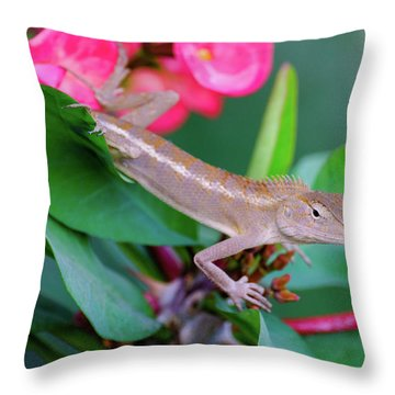 Throw Pillow featuring the photograph Little Lizard by Nicole Young